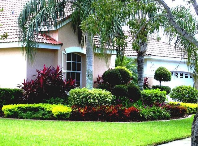 Diện tích phía trước của ngôi nhà này không tính là nhỏ nhưng cũng không phải là quá lớn. Những thảm cỏ xanh bao bọc khuôn viên được trồng từ các loài cây lâu năm như thế này sẽ là lựa chọn tốt nhất.
