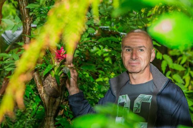 Nick Wilson, 61 tuổi, một nhân viên bán phần mềm ở Leeds, đã dành 20 năm và số tiền 15.000 bảng Anh để biến khu vườn phía sau nhà của mình thành một khu rừng mưa bí mật đáng kinh ngạc.