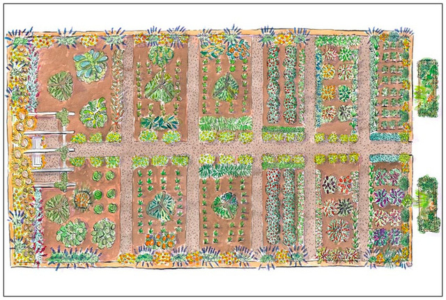 1. Nếu mảnh đất làm vườn vuông vắn, hãy tạo các luống có kích thước to nhỏ khác nhau phù hợp với số lượng cây trồng hay loại rau quả định trồng. Bạn đừng quên trồng cùng một loại cây viền xung quanh để bức tranh vườn đẹp quy củ và ấn tượng hơn.