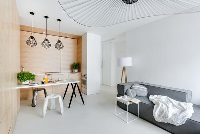 Tầng một của căn hộ bao gồm không gian phòng khách - bếp, một phòng ngủ và một công trình phụ.