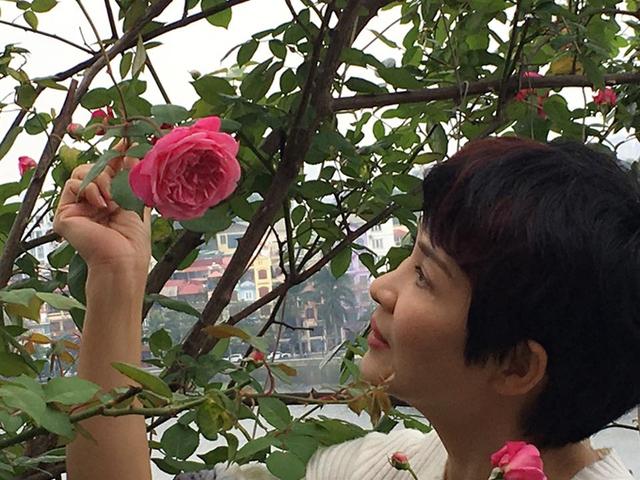 Chị Mộc Lan ở quân Tây Hồ, Hà Nội, là một người yêu hoa. Chị mê trồng hoa, đặc biệt là hoa hồng.