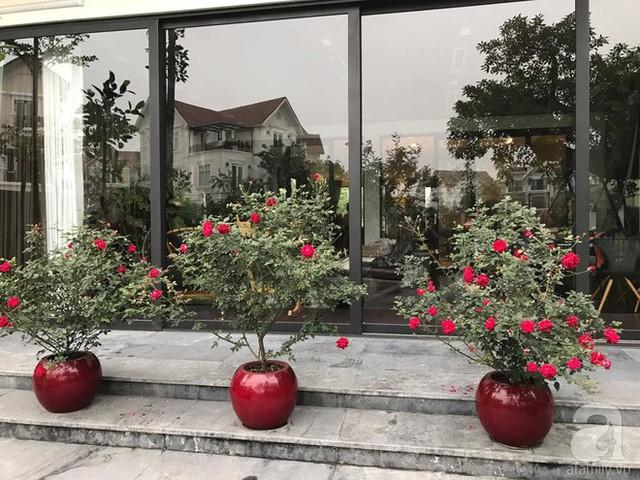 Hiên nhà rực rỡ sắc hoa.