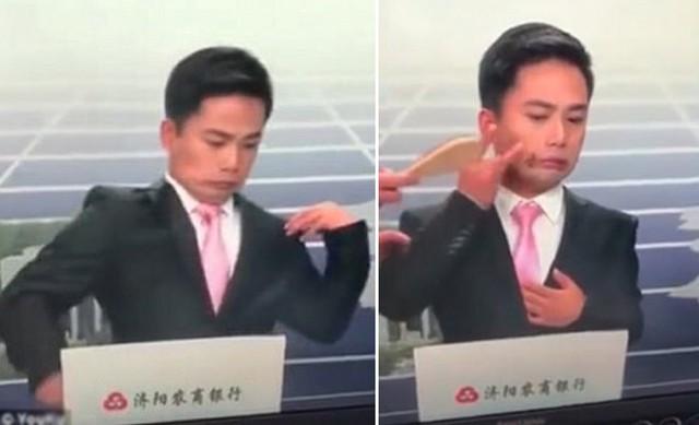 Nam MC hoảng sợ vì bị ong đậu trên mặt khi đang dẫn bản tin