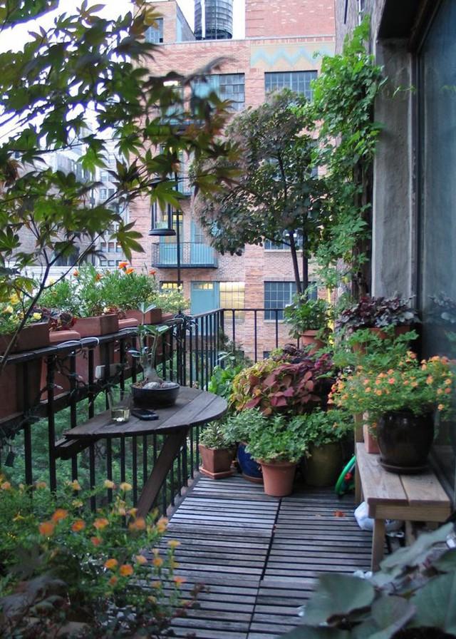 2. Từng chậu hoa nhỏ đầy xinh xắn bao quanh ban công một căn hộ chung cư thổi bay những ồn ào của cuộc sống thành thị.