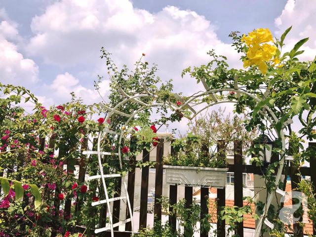 Cổng hoa đầy chất thơ.