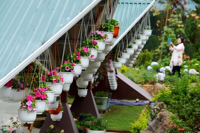 Lấy ý tưởng từ những công trình kiến trúc gắn liền với các câu chuyện cổ tích, gia đình bà Lê Thị Ngọc Trinh quyết định xây dựng 2 căn nhà, gồm nhà trống và nhà mái với lối kiến trúc hết sức lạ lẫm.