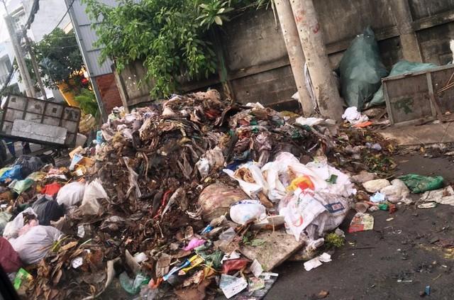 Trong bãi không đủ chứa, rác đổ tràn cả đường đi của người dân