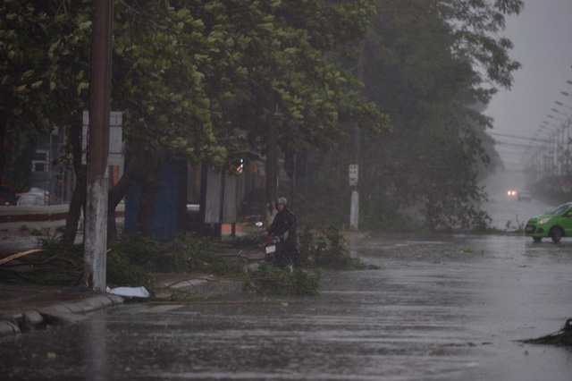 Cây quật đổ cây cối, xe cộ đi đường ở Hà Tĩnh. Ảnh: Hoàng Anh