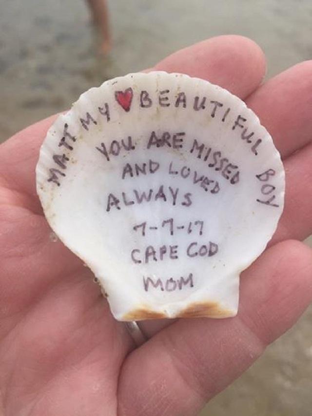 Chiếc vỏ sò mà 2 đứa trẻ Mia và Vincent đã tìm thấy trên bãi biển tại Cape Cod.