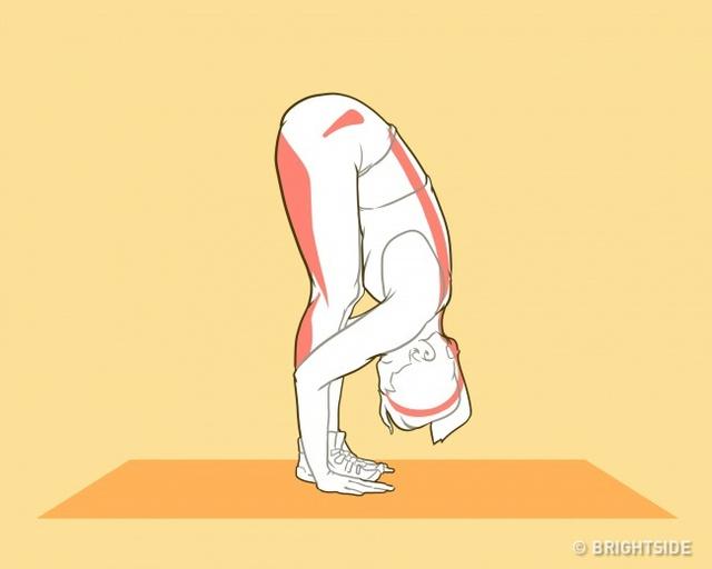 Những bài tập chiều cao giúp bạn cao lên nhanh chóng trong tuổi dậy thì - Ảnh 7.
