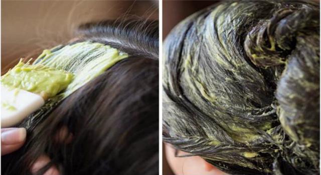 Ngoài dưỡng dài, dầu ô liu còn có tác dụng phục hồi tóc khô xơ, chẻ ngọn - Ảnh: Internet