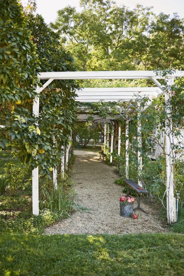 Thêm vào đó là cả một vườn cây ăn quả xanh mướt sai trĩu cành chờ đợi chủ nhân đến hưởng dụng.