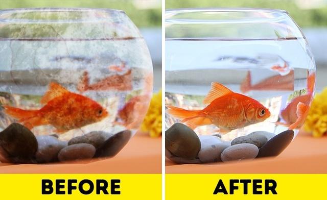 Cọ rửa các mặt của bể cá thường xuyên bất cứ lúc nào có thể bằng giấm để làm sạch những mảng bám cứng đầu. Bạn cũng có thể dùng cách này để làm sạch dụng cụ pha cà phê nhỏ giọt.