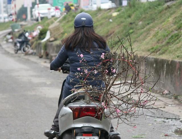 Nhiều chị em phụ nữ vui mừng khi mua được những cành đào ưng ý mang về gia đình dịp Tết Dương lịch.