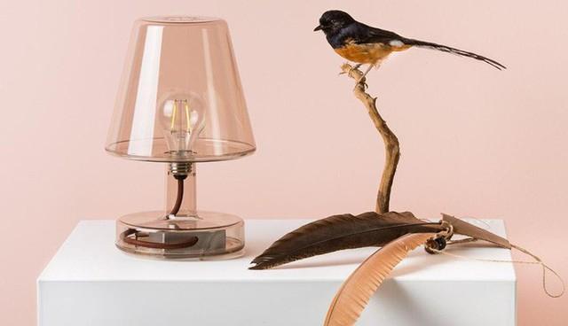 12. Dù cho bạn chẳng dùng đến nó để chiếu sáng thì vẻ đẹp của mẫu đèn cũng giúp cho căn phòng của bạn đẹp hơn nhiều đó.
