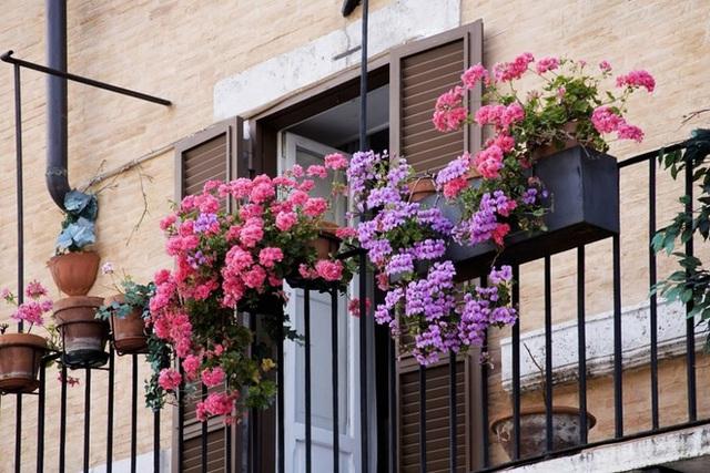 13. Nếu ban công của bạn quá nhỏ và bạn cảm thấy trang trí bất kỳ yếu tố lớn hơn sẽ làm lộn xộn. Điều này sẽ biến ban công thành một phần quan trọng của ngoại thất nhà và thể hiện những yếu tố đặc sắc.