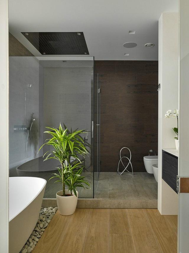 Sàn gạch cùng màu xám với chậu cây xanh mướt làm điểm nhấn cho không gian thêm sáng hơn.