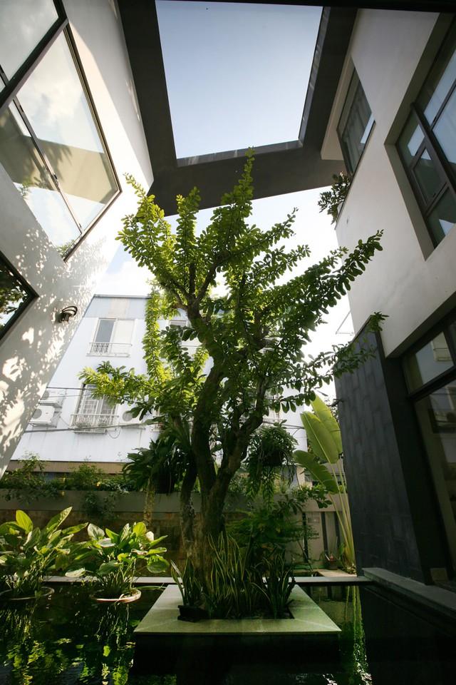 KTS mong rằng công trình sẽ là sự hội tụ tinh tế của kiến trúc và thiên nhiên, của truyền thông và hiện đại.