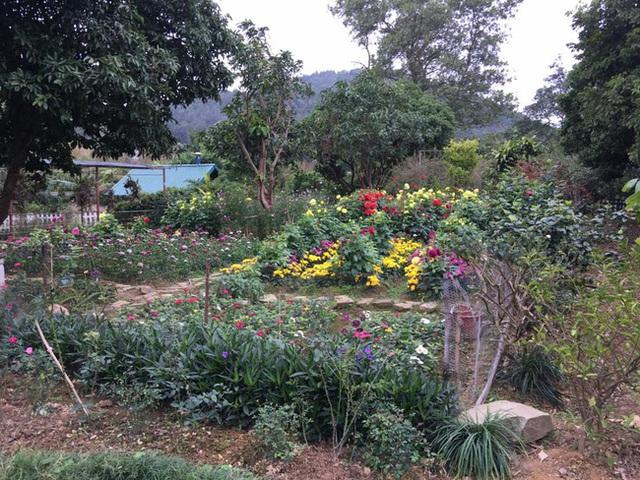 Nữ ca sĩ dành rất nhiều không gian để trồng đủ các loại hoa trong vườn. Để tiện cho việc đi vào vườn và chăm bón, lối đi đều được xếp đá để vừa duy trì được nét tự nhiên, vừa sạch sẽ.