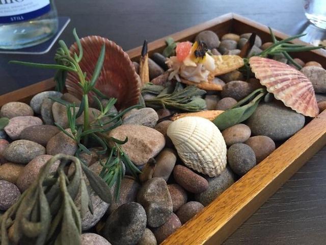 Có ai nhìn thấy thức ăn nằm ở đâu trong cái mớ hỗn độn toàn sỏi đá này không?