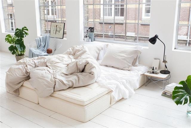 Khi phòng ngủ cũng là tất cả không gian sống bạn có thì phong cách này chính là một lựa chọn thông minh mà bạn nên nghĩ đến.