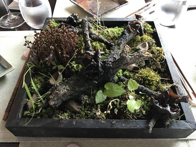 Lại một cách trình bày cầu kỳ với nhiều chi tiết chẳng liên quan nhưng thức ăn thì tìm mãi không thấy đâu. Cảm giác như được phục vụ món salad gỗ cây trộn rau cỏ dại vậy.