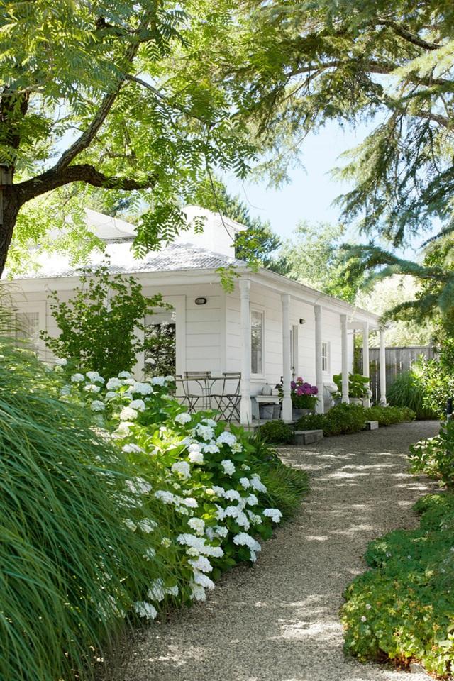 18. Những loại cây hoa, cây cảnh dạng bụi được phủ kín hai bên lối đi, tạo nét mềm mại, xanh tươi cho mọi người khi dạo bộ quanh vườn.