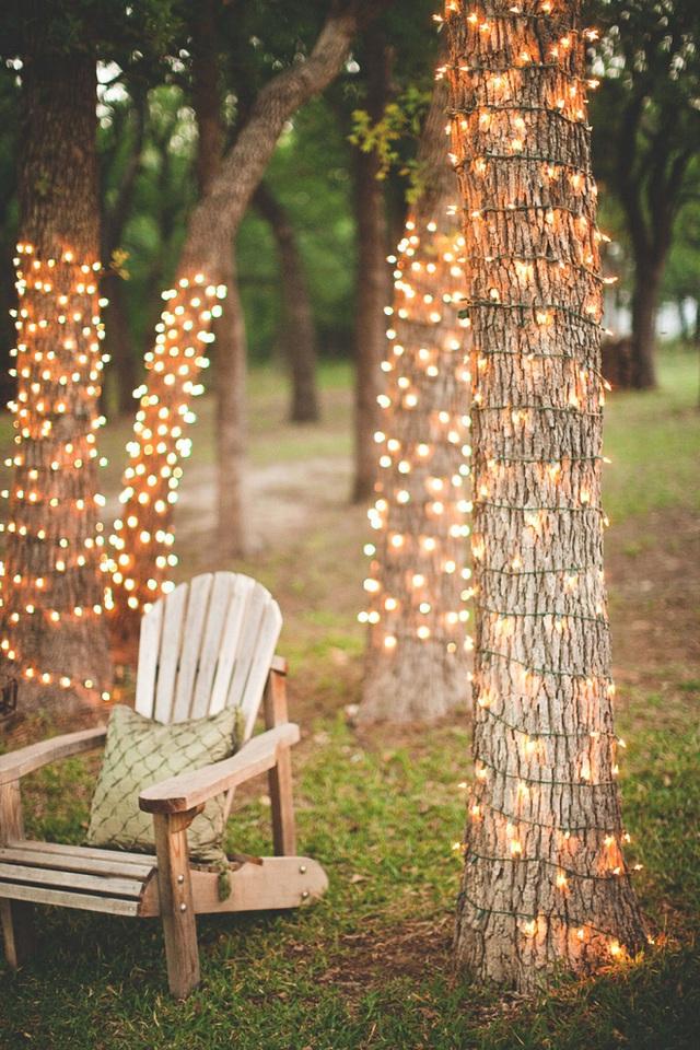 19. Còn nếu khu vườn nhà bạn đang sở hữu thật nhiều những gốc cây thì phong cách trang trí quấn đèn led là phù hợp, vừa đơn giản lại hiệu quả tức thì.
