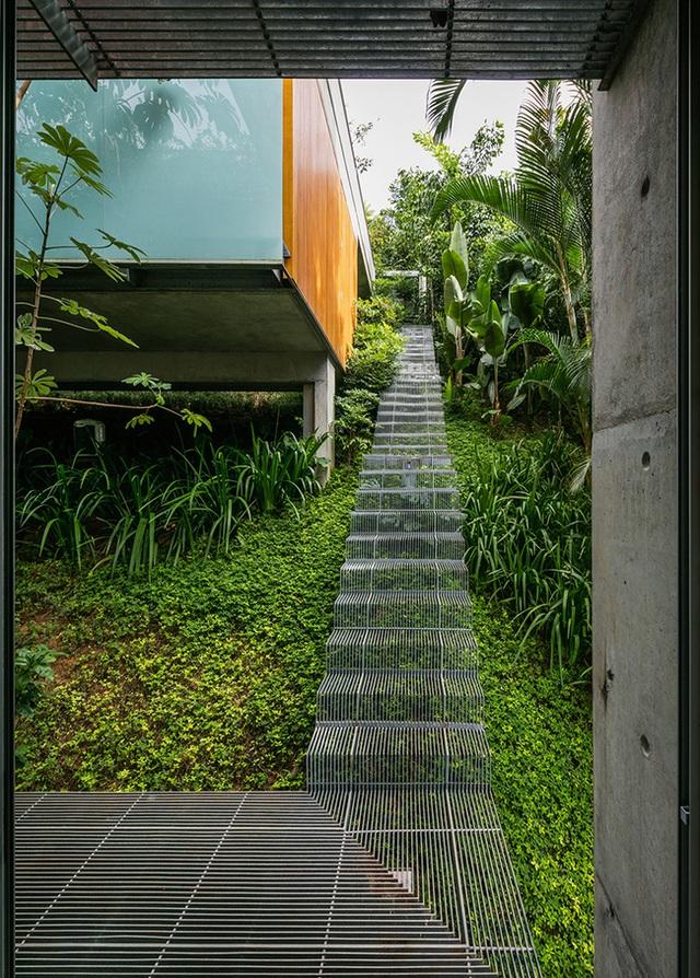 Thay vì đào đất và tạo ra các các bậc cầu thang bằng bê tông vững chắc, các nhà thiết kế lại sáng tạo ra một cầu thang bằng kim loại nổi. Điều này giúp tạo cảm giác như đang đi trên các cây xanh tươi tốt vậy.