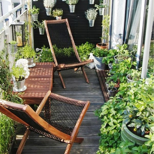 3. Cảm xúc sẽ rất tuyệt vời nếu được ngồi đây và ngắm nghĩa vườn cây xanh mát dưới nắng.