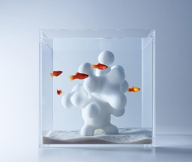 Khối hình học cá tính này được đặt trong bể cá mini để trang trí cho góc làm việc của bạn thêm cá tính.