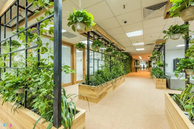 Ngoài ra, việc làm tường bằng gỗ, kính và cây xanh tạo không gian nhẹ nhàng, thoải mái. Toàn bộ vách thoáng còn góp phần đưa không khí, ánh sáng vào sâu nhất trong văn phòng.