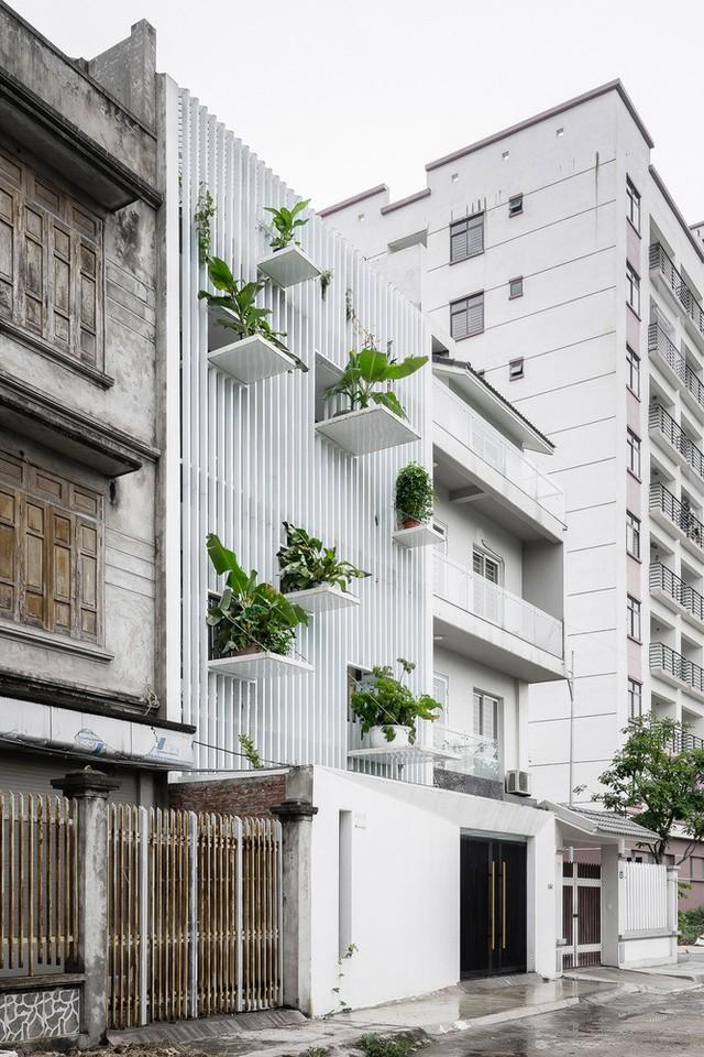 Từ ngoài căn nhà, có thể thấy nhiều chi tiết bệ đỡ cây xanh độc đáo.
