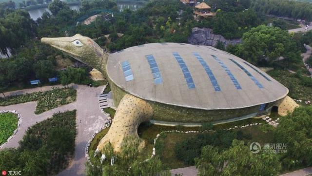 Hầu hết tất cả các du khách đều rất ấn tượng với phần mai rùa được mô phỏng y như thật. Các kiến trúc sư còn sáng tạo hơn khi thiết kế chất liệu kính trong suốt trên mái để trong nhà luôn đón được ánh sáng tự nhiên.