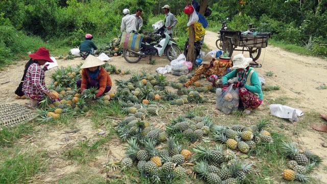 Mặc dù đem lại lợi nhuận cao nhưng đến nay nông dân phải tự tìm đầu ra để tiêu thụ nên giá cả rất bấp bênh.