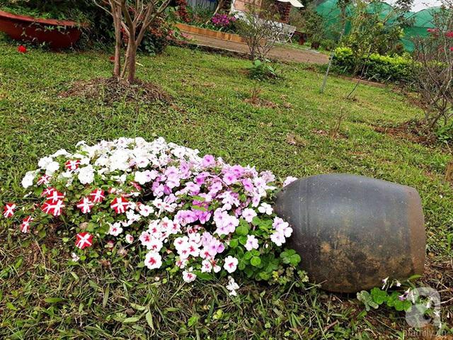 Dải hoa tạo nét nhấn rất duyên cho khu vườn.