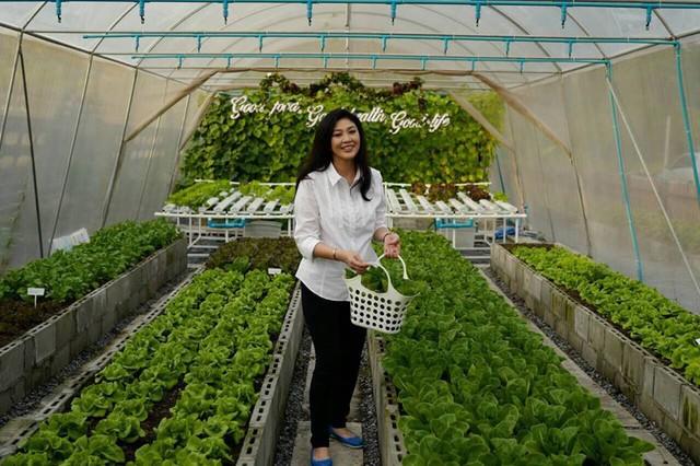 Trong khu vườn nhỏ xinh, bà còn treo tấm biển in dòng chữ: Good food, good health, good life (Thực phẩm sạch, sức khỏe tốt, cuộc sống tươi đẹp).