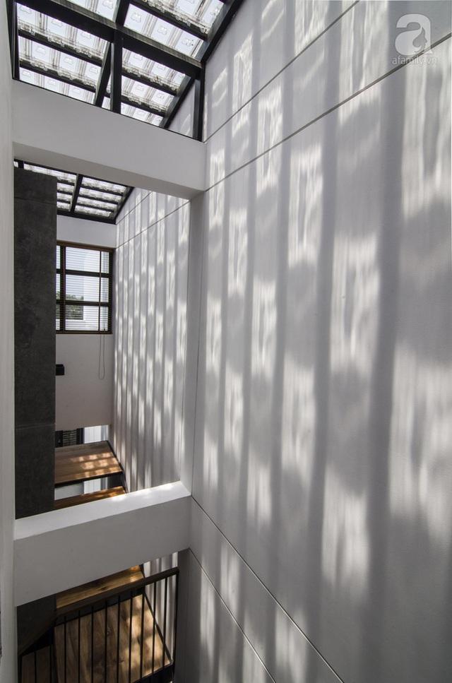 Một phần mái được sử gạch kính để giúp lấy sáng cho các không gian phía dưới.