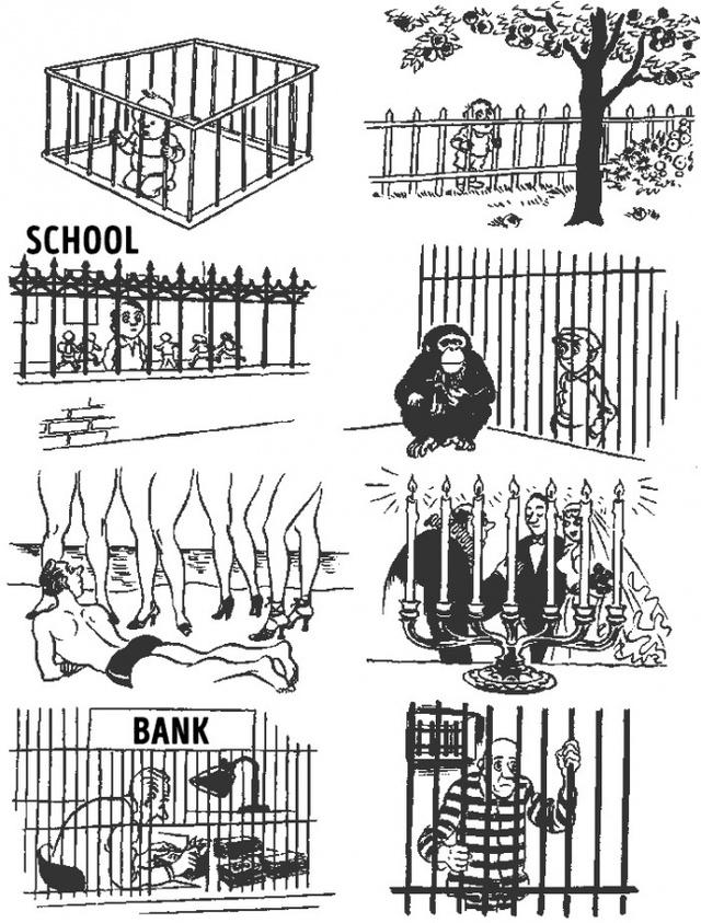 Những hàng rào trong từng giai đoạn cuộc đời một con người.