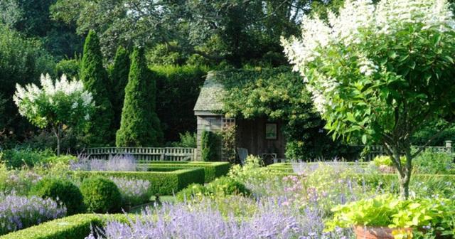 Khu vườn được thiết kế ấn tượng.