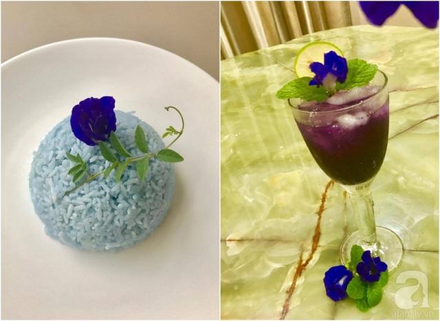 Chị Hiền sử dụng hoa đậu biếc chế biền cơm và đồ uống.