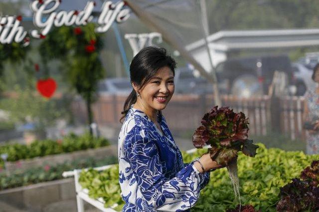 Những cây rau xanh mướt, tươi tốt khiến ai cũng trầm trồ. Bà Yingluck Shinawatra còn tự tay cắt những cây rau sạch để ăn ngay tại vườn.