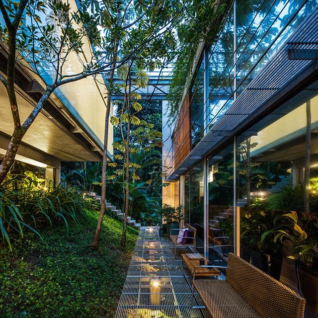 Ánh sáng và mưa đi qua các lỗ của cầu thang giúp nuôi dưỡng các cây xanh dưới nó. Nhờ thiết kế này mà các hoạt động quang hợp của cây xanh, các tác động của côn trùng có lợi, động vật vẫn diễn ra một cách bình thường.
