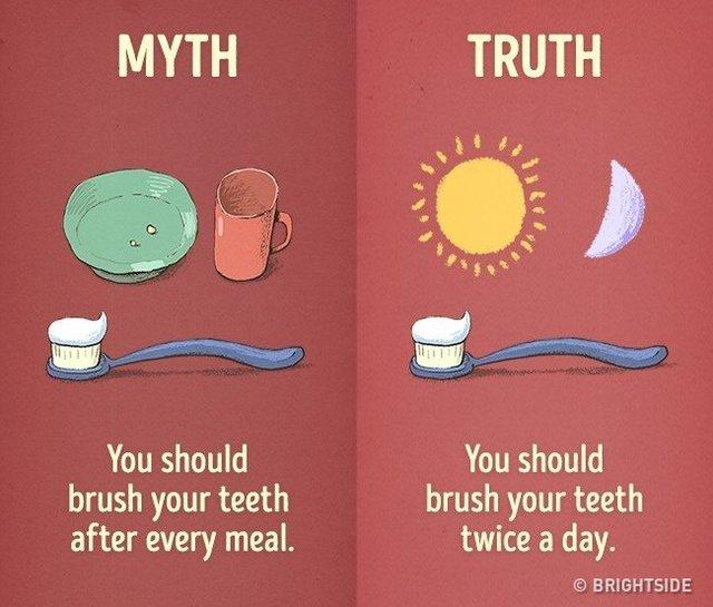 Mọi người nên đánh răng hai lần trong ngày.