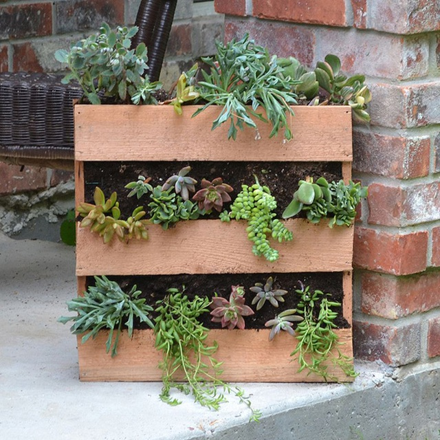 Một chiếc kệ trồng cây quá đáng yêu phải không? Chiếc kệ này sẽ rất hoàn hảo để trồng những loài cây mọng nước, và có rất nhiều cách để bạn có thể trưng bày chúng. Bạn có thể sử dụng những mẩu gỗ từ những thanh pallet để tạo một cái tương tự hoặc sử dụng bất kỳ phần gỗ thừa nào mà bạn có thể tìm thấy. Dù cách nào đi nữa thì nó cũng khá dễ dàng để tạo một kết cấu có thể chứa được những chậu cây nhỏ.