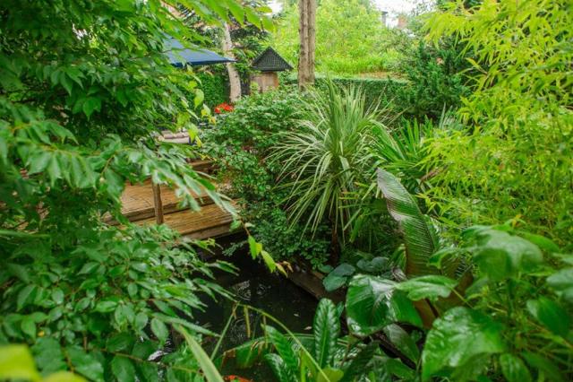 Rừng mưa là một quần lạc thực vật kín tán do cây gỗ chiếm ưu thế, xuất hiện dưới điều kiện có độ ẩm dồi dào. Rừng mưa thông thường có hai tầng cây gỗ và cây bụi hoặc nhiều hơn