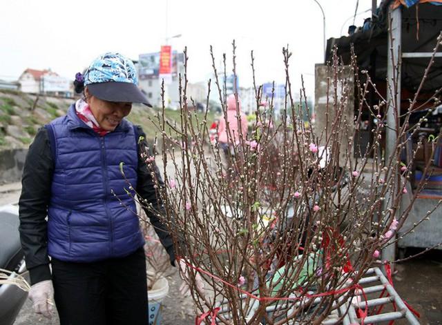 Một cành đào nở sớm được xem là đẹp nhất chợ Quảng Bá được bán với giá 450.000 đồng.
