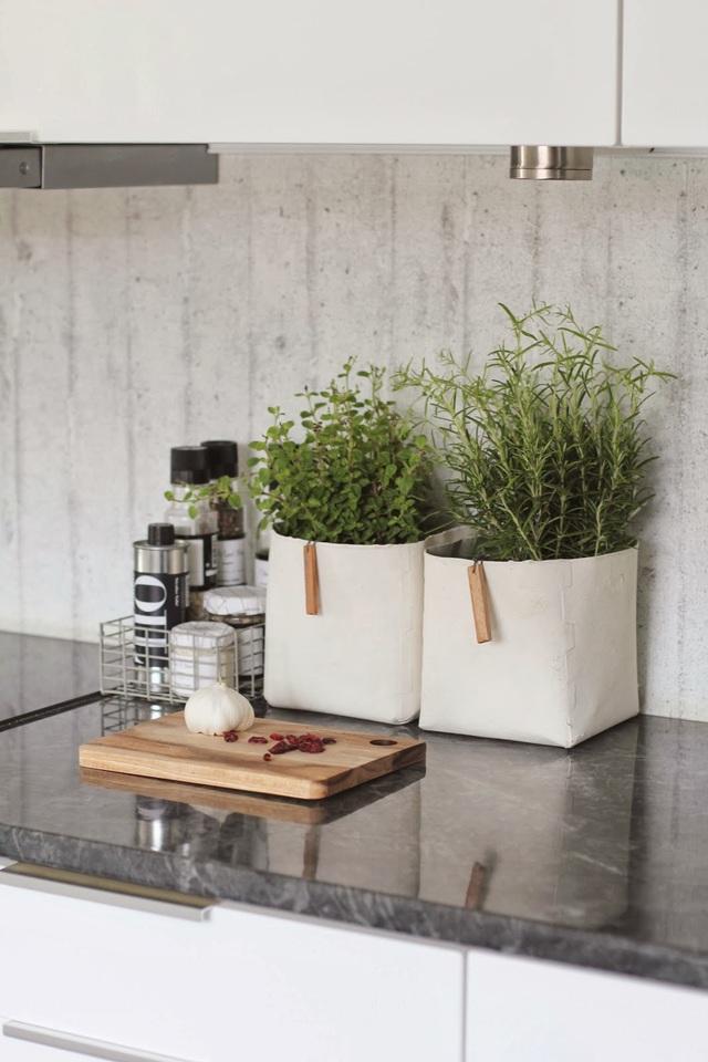 Trồng rau thơm ngay trên bàn là một cách làm sáng tạo vừa giúp bữa ăn của bạn thêm nhiều hương vị lại giúp nhà bếp trông tuyệt vời hơn.
