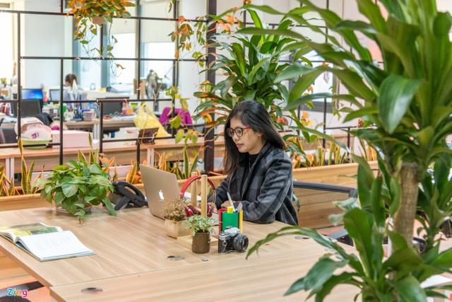 Nội thất và cây xanh hài hòa được cân đối hợp lý với phong cách văn phòng mở. Nghĩa là không gian làm việc của nhân viên không bị giới hạn. Mọi người có thể trao đổi, tương tác dễ dàng trong quá trình làm việc.