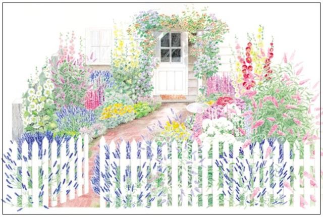 6. Một khu vườn phía trước nhà sẽ đầy quyến rũ và ngọt ngào nhờ sở thích trồng hoa của bạn. Hãy lấy cổng chính, tường rào, cửa chính làm trung tâm để trồng cây bụi và hoa leo. Tạo lối đi rộng rãi và trồng hoa hai bên, cách đơn giản và cổ điển này luôn là cách tuyệt vời để mang vẻ đẹp rực rỡ, thân thuộc đến ngôi nhà của bạn.